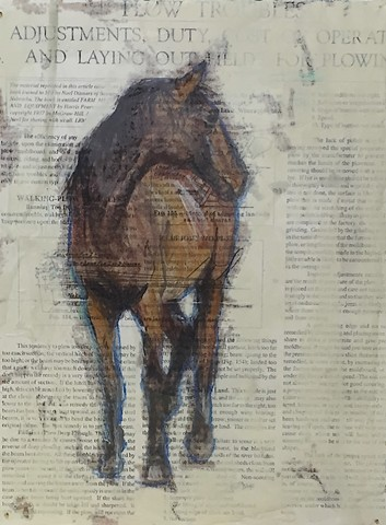Mixed media horse art by Katherine Bell McClure