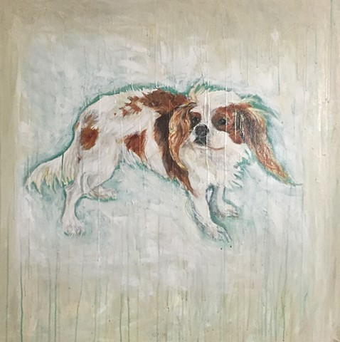 Dog Portraits by Atlanta artist Katherine Bell McClure