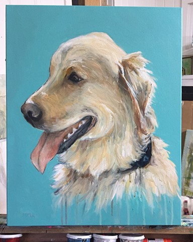 Original pet dog portraits by Katherine Bell McClure