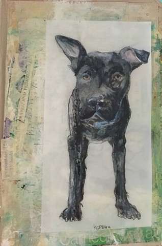 dog portraits on books by Katherine Bell McClure