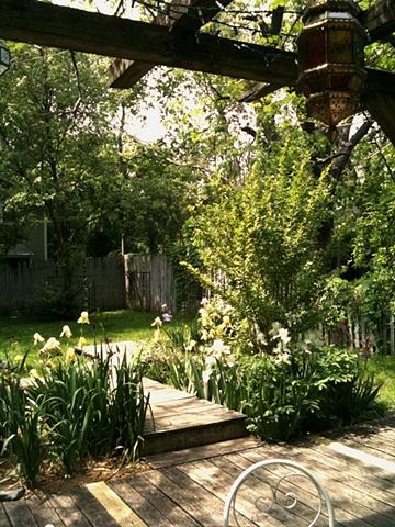 The spring yard