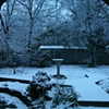The winter yard