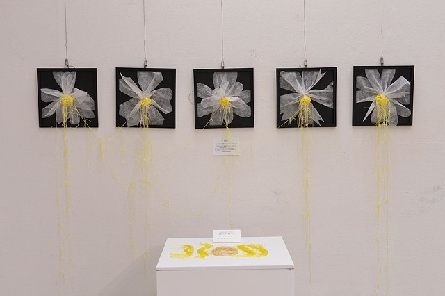 Bloom (2015)