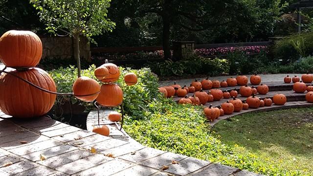 Pumpkin Emoji Amphitheater