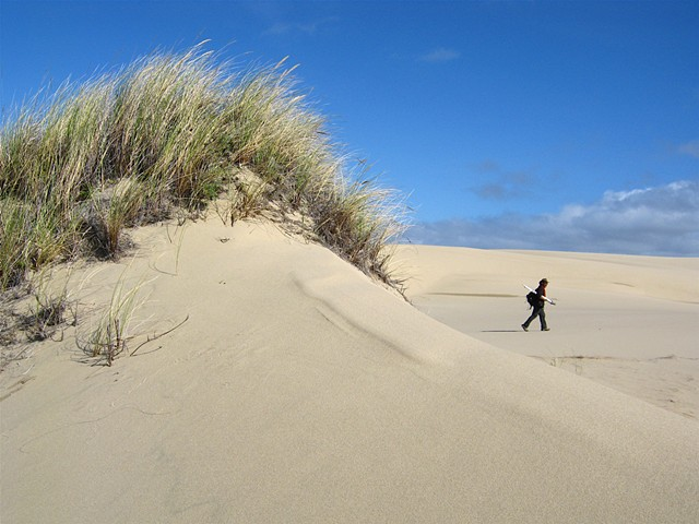 Oregon Dunes State Park, OR