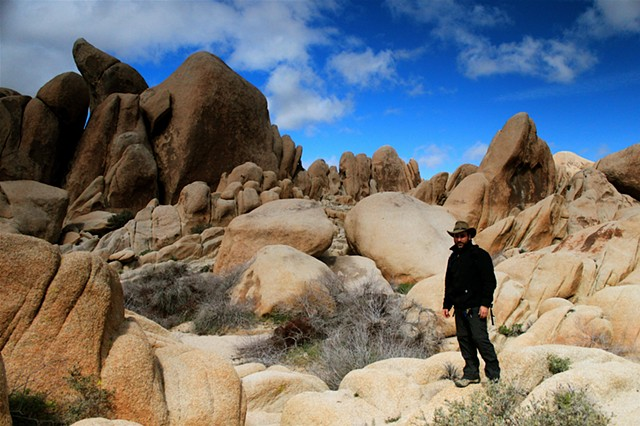 the undulating sandstone forms of the Wonderland of Rocks, Joshua Tree National Park, CA