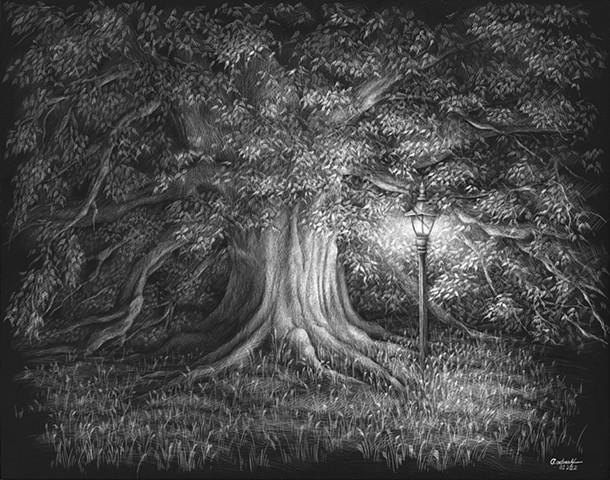 Century Tree at Texas A&M University Majestic Oak