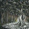 """Memory Trees"" (Full View)"