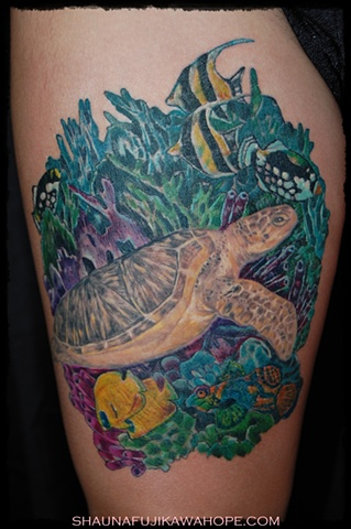 All Rights Reserved By ShaunaFujikawa Hope Tattoos & Art - Tropical Turtle