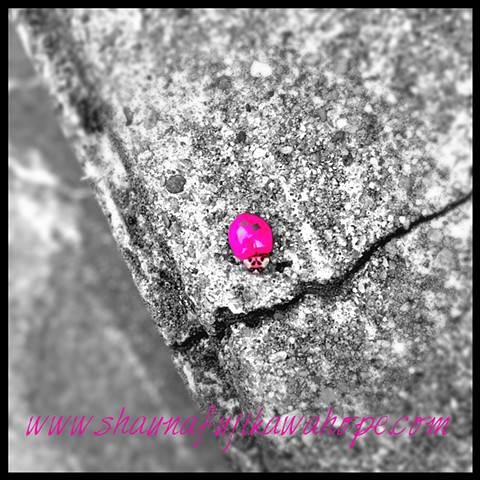 All Rights Reserved By Shauna Fujikawa Hope Tattoos & Art - Pink Lady Bug