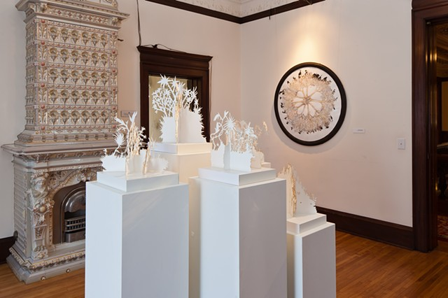 Island Intersections- Installation at American Swedish Institute