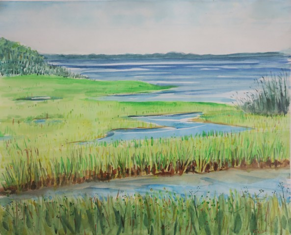 osprey, lbi, watercolor, jersey shore, studio tour, beach art