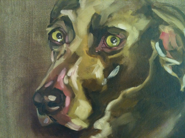 Oil painting of Weimaraner by Maggie Wolszczan