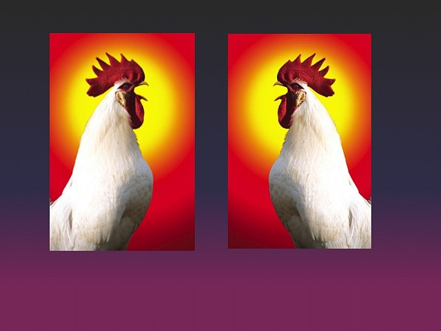 Untitled II (Rooster)