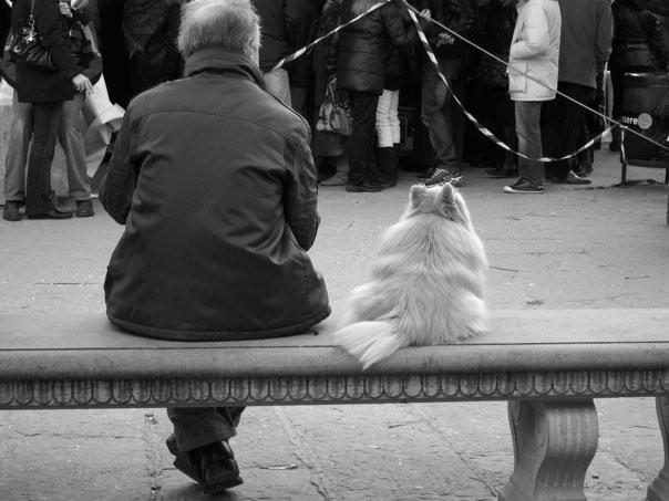 L'uomo e il suo cane, Firenze
