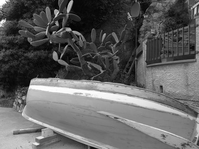 Barca e Cactus, Vernazza