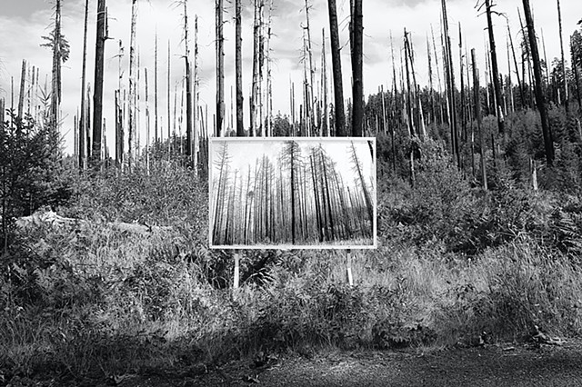billboard with forest fire in a burned landscape by Michael Boonstra