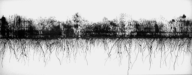 a drawing referencing forest fires by Michael Boonstra using ink and wind