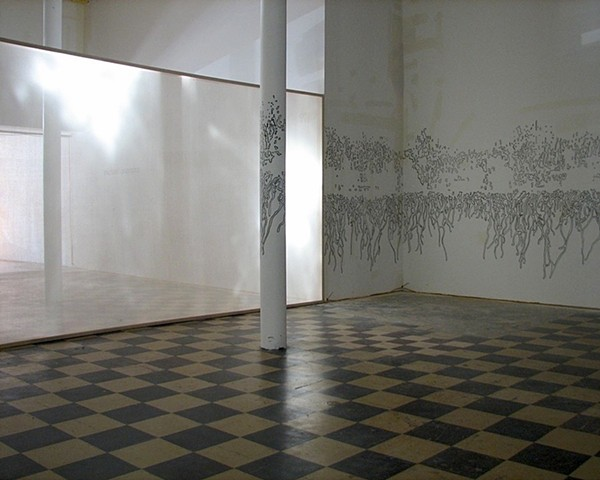 An site-specific installation using light, scrim, and drawing by Michael Boonstra.