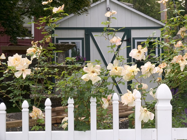 flowers, fence, suburb, landscape
