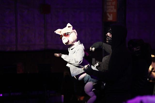 Ponzi Porco the Pig