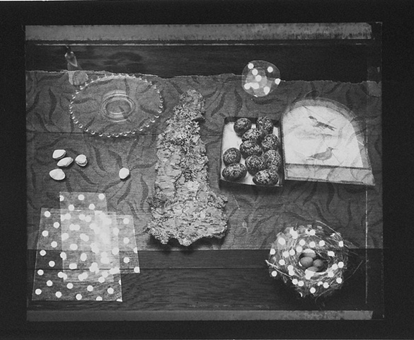 Still Life with Photogram #3