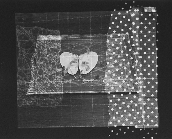 Still Life with Photogram #5