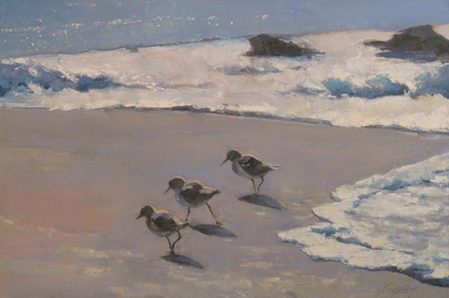 Shorebirds - sold