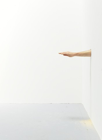 Untitled (limb)