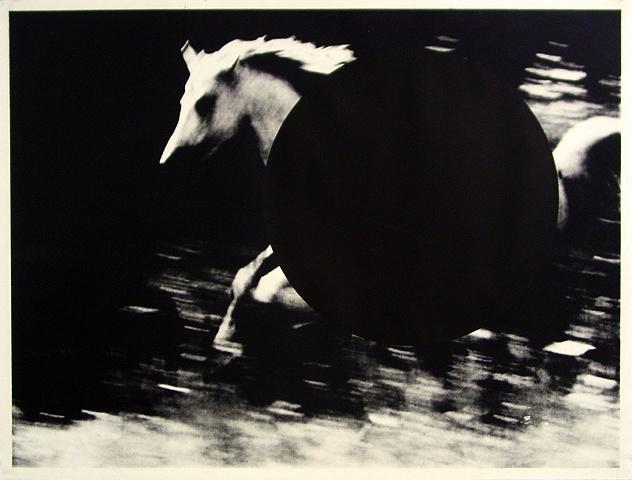 Morgan Sims-Horse      ed. 4