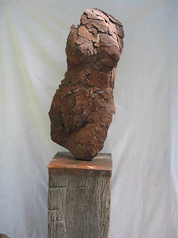 ancient australian  redgum sculptural art for sale gallery