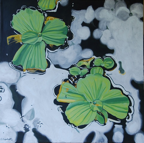Lake Alice Water Lettuce painting by Cindy Capehart, Gainesville, Florida