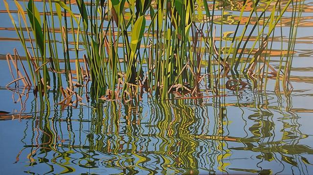 Lake Dora Grasses 2