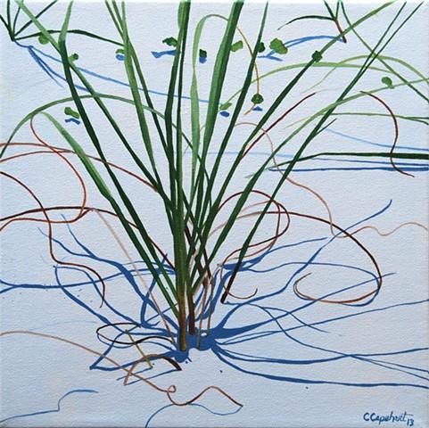 Beach Grass V