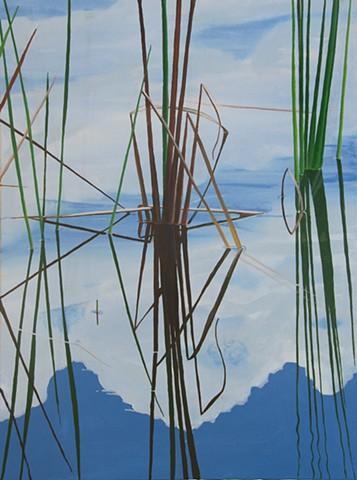 Northwood Pond Grasses 6