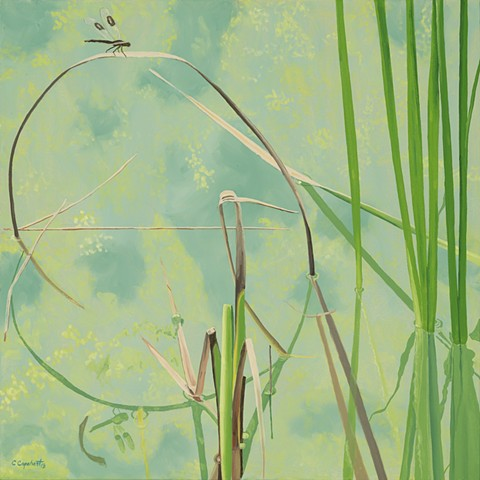 Northwood Pond Grasses 3