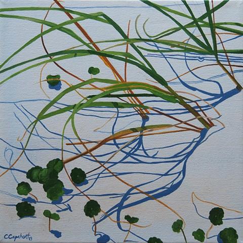 Beach Grass VI