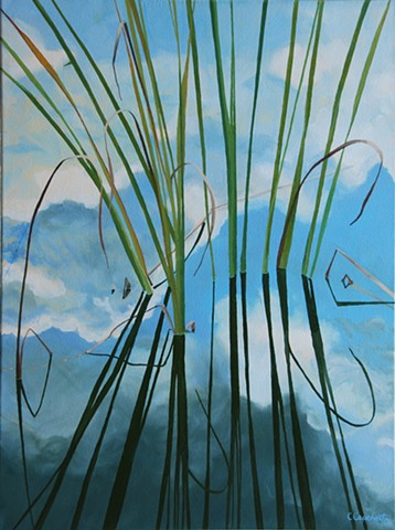 Northwood Pond Grasses 2