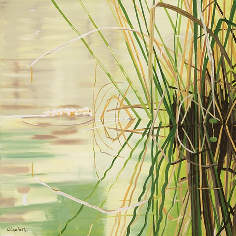 Lake Alice Grasses 10