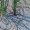 Beach Grasses I