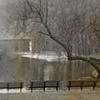 """""""Boston Common and Public Garden 26"""""""