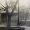 """""""Boston Common and Public Garden  2"""""""
