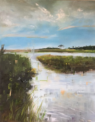 Henlopen summer marsh