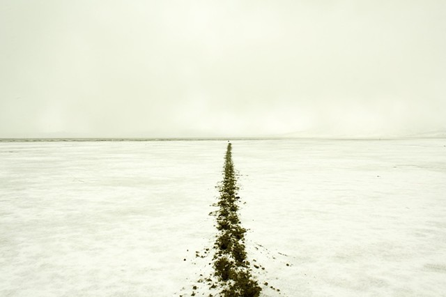 500 ft. track in the mudflat of Summer Lake, ending at a large isolated rock.  2012. Archival ink jet print, 13x20""