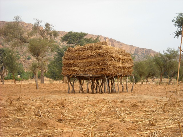 Hay Bales Dogon Country