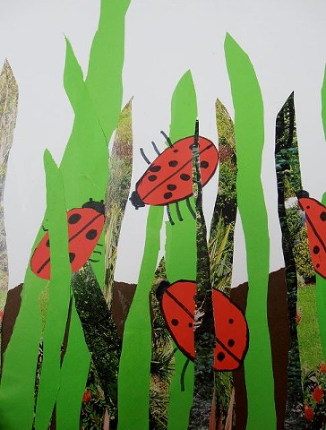 Ladybugs Collage