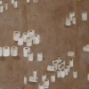 Toilet Paper Landscape, v.1