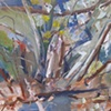 Annimated Landscape (Sycamore Grove)
