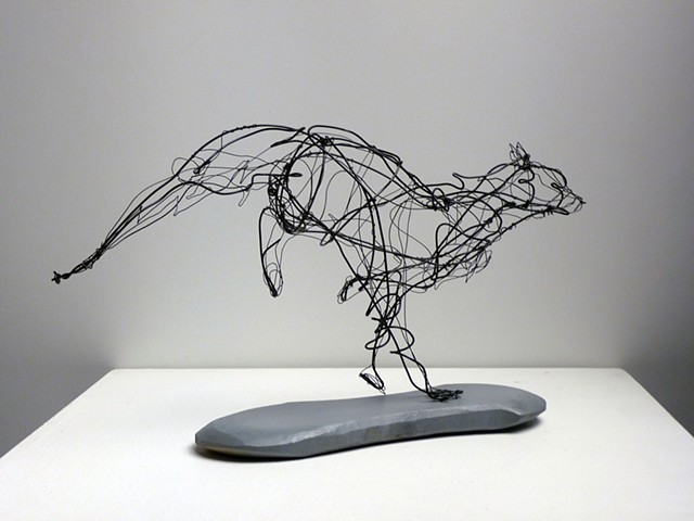 Animal in Motion Wire Project CSU