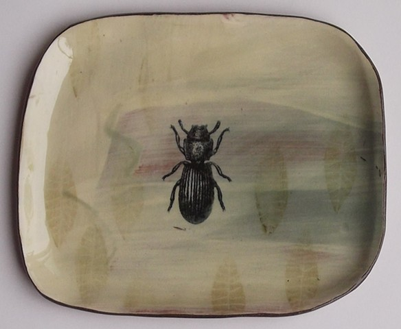 88. beetle plate with leaves